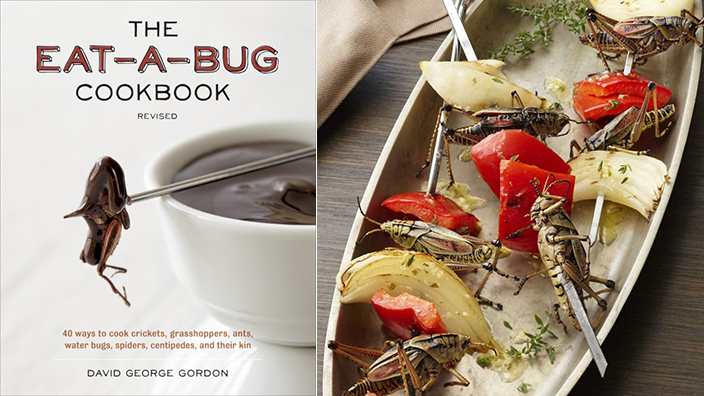 Eat a bug cookbook